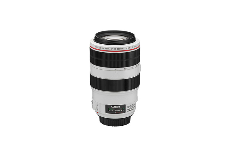 Canon EF 70-300mm f/4-5.6 IS USM B-vare